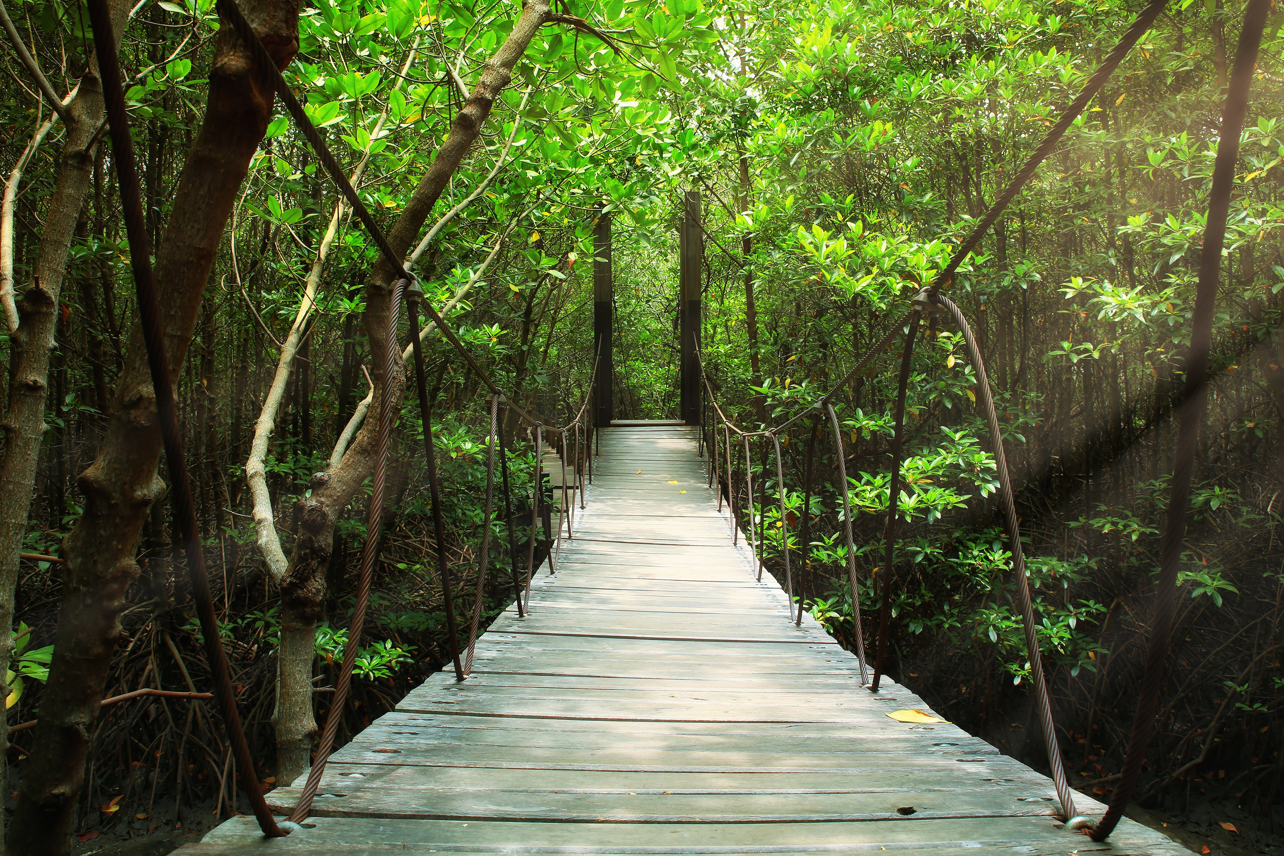 Costa Rica Blog feature