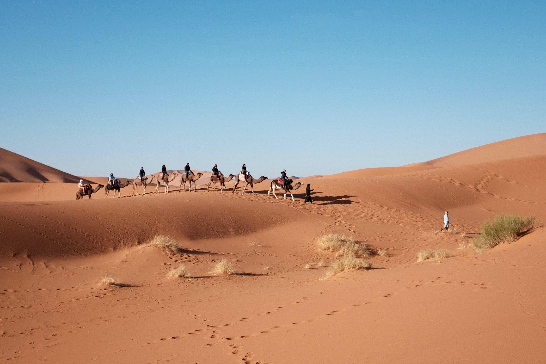 Volunteer_Africa2.jpg