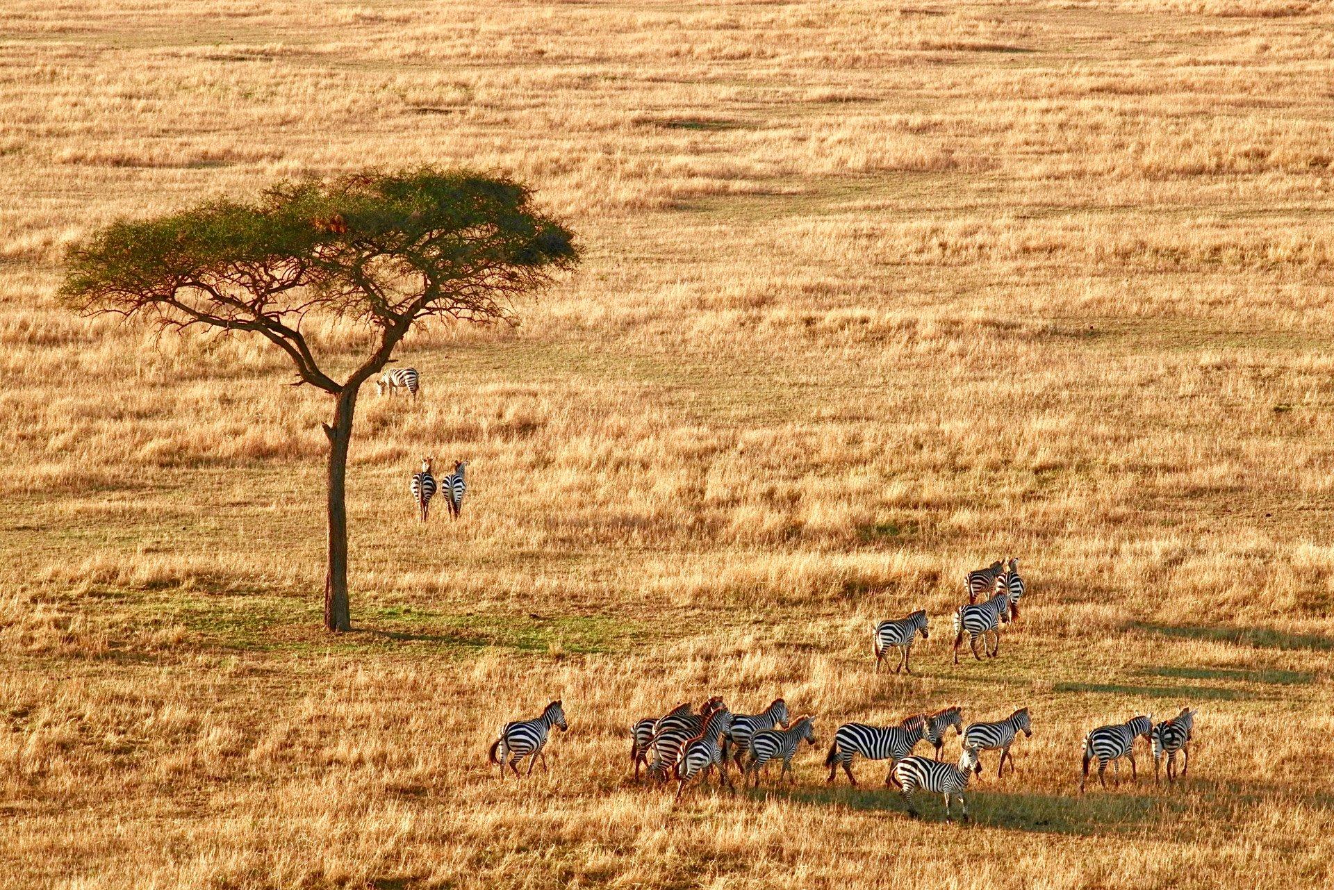 destination-review-south-africa-2