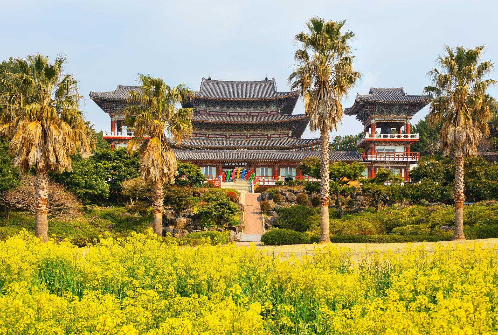 destination-reviews-south-korea-2
